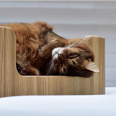 Ein Design Kratzbaum von stylecats - damit Sie und Ihre Katze lange Freude an einem hochwertigen Kratzbaum, Kratzbrett oder anderem Katzenzubehör haben.