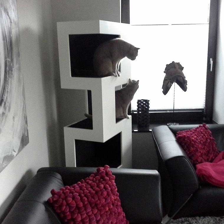 british kurzhaar kratzbaum empire bildergalerie stylecats design kratzbaum. Black Bedroom Furniture Sets. Home Design Ideas