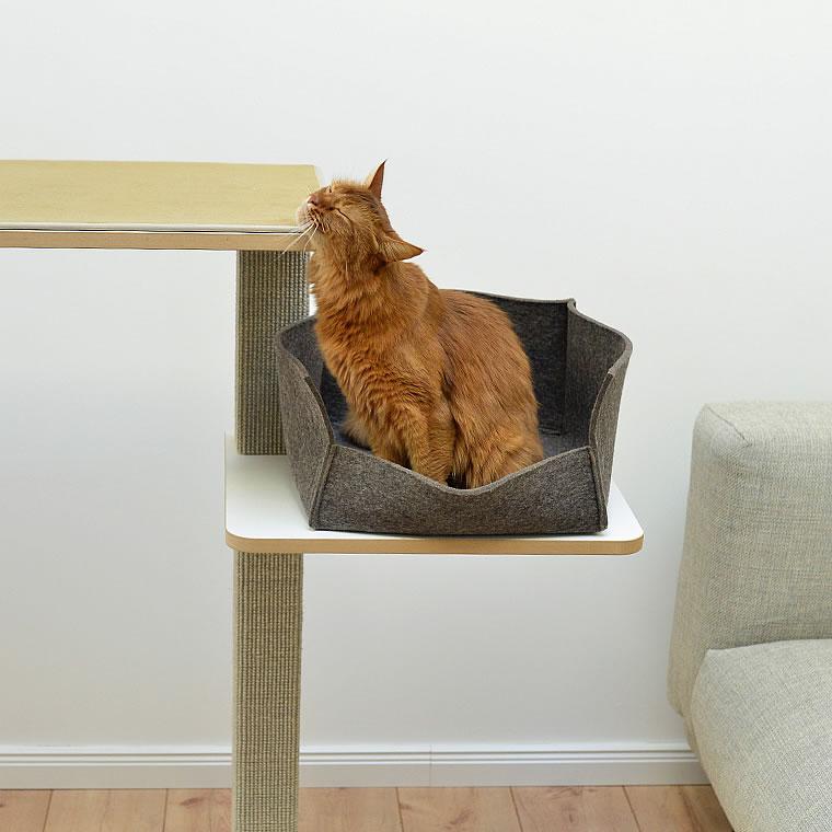 Somali Kratzbaum Clu Bildergalerie Stylecats Design Kratzbaum