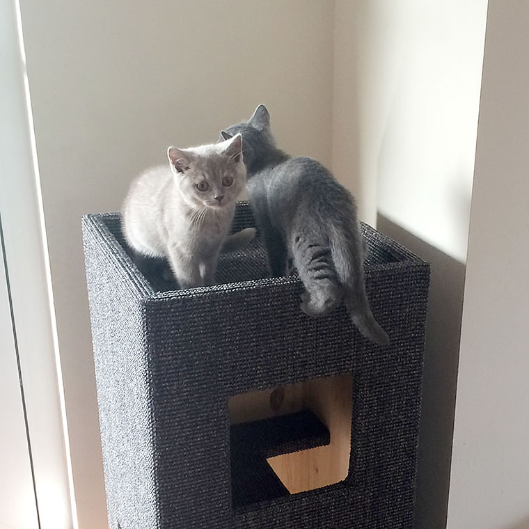 bkh kratzturm convenient i bildergalerie stylecats design kratzbaum. Black Bedroom Furniture Sets. Home Design Ideas