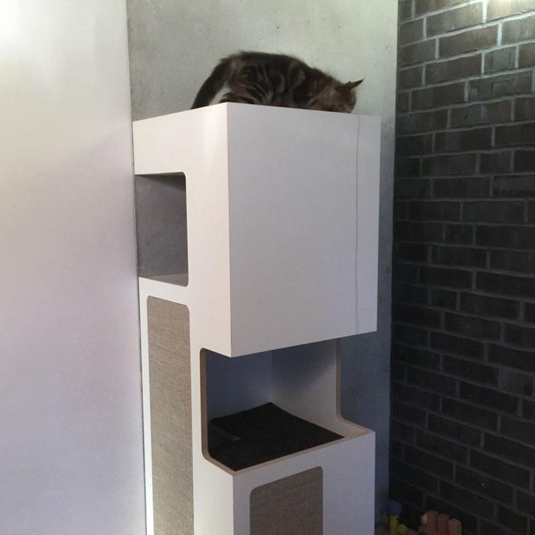 maine coon kratzbaum empire bildergalerie stylecats design kratzbaum. Black Bedroom Furniture Sets. Home Design Ideas
