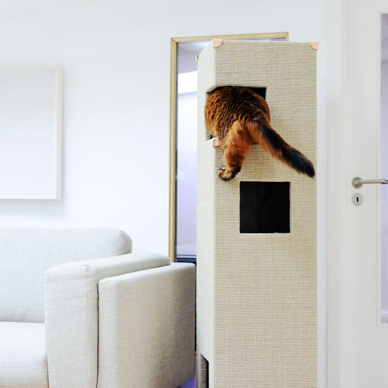 somali kratzbaum dome bildergalerie stylecats design kratzbaum. Black Bedroom Furniture Sets. Home Design Ideas