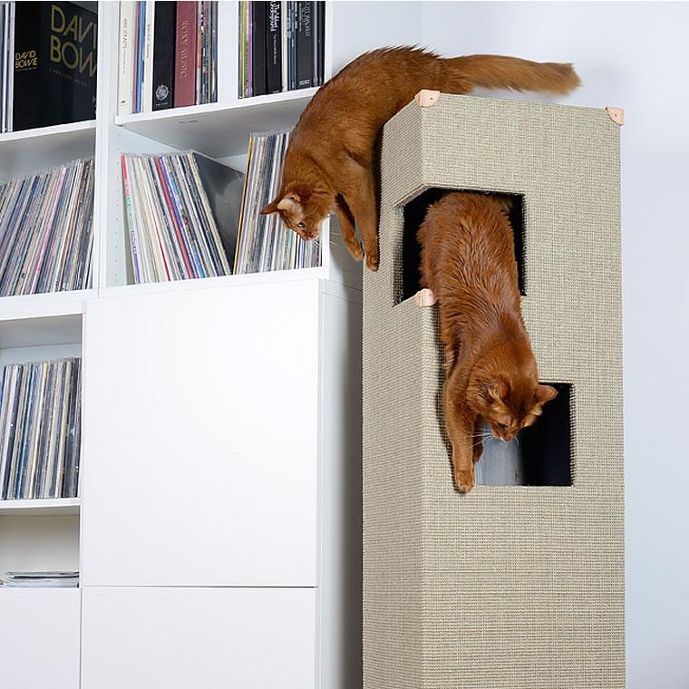 somali katzen kratzbaum dome bildergalerie stylecats design kratzbaum. Black Bedroom Furniture Sets. Home Design Ideas