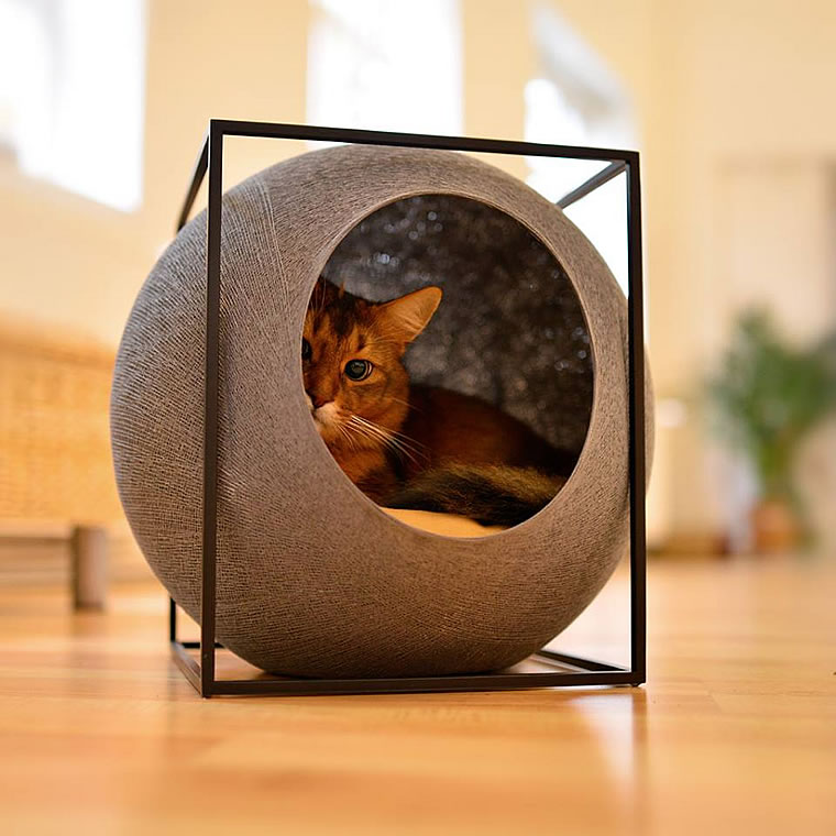 somalikatze kuschelh hle the cube bildergalerie. Black Bedroom Furniture Sets. Home Design Ideas