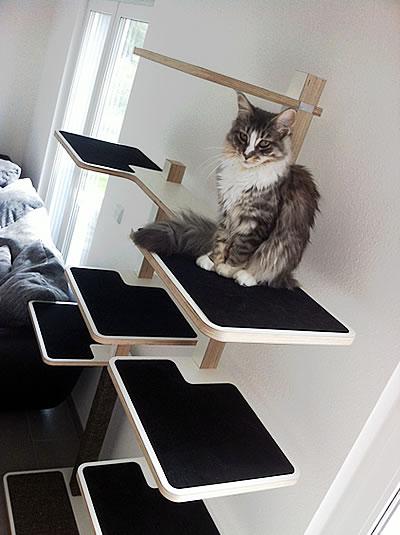 Kratzbaum Home 2-stämmig - Kratzbaum Feedback Stylecats