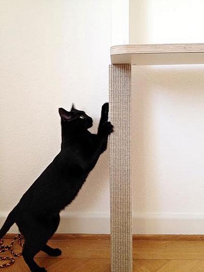 Kratzbaum Leiter 3 Liegeflächen - Kratzbaum Feedback Stylecats