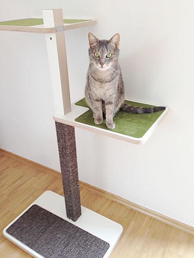 Kratzbaum Home, 2 Liegeflächen - Kratzbaum Feedback Stylecats