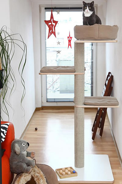 Kratzbaum Coosi, 3 Liegeflächen - Kratzbaum Feedback Stylecats