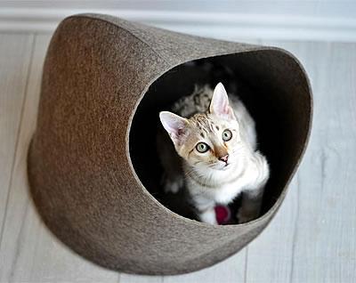 Kuschelhöhle Hoodie - Kratzbaum Feedback Stylecats