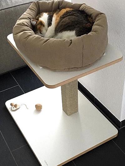 Kratzbaum Clu, 1 Liegefläche - Kratzbaum Feedback Stylecats