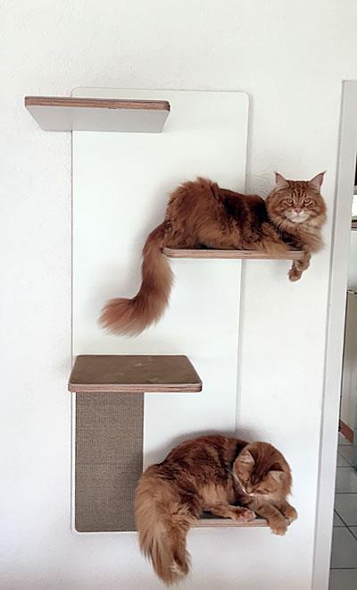Kratzwand Relex 4 Liegeflächen - Kratzbaum Feedback Stylecats