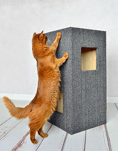 Kratzbaum Convenient I anthrazit - Kratzbaum Feedback Stylecats