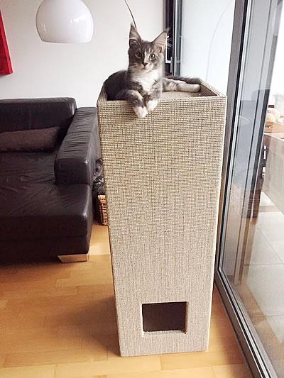 Kratzbaum Convenient II, weiß, Sisal hellgrau - Kratzbaum Feedback Stylecats