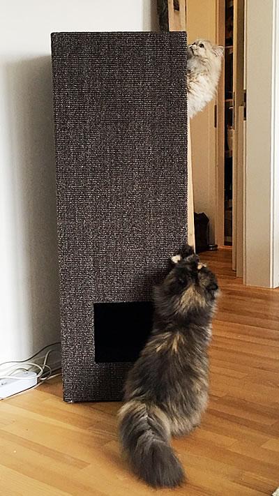 Kratzbaum Convenient Large, Sisal Anthrazit, gebeizt, ohne Lederecken - Kratzbaum Feedback Stylecats