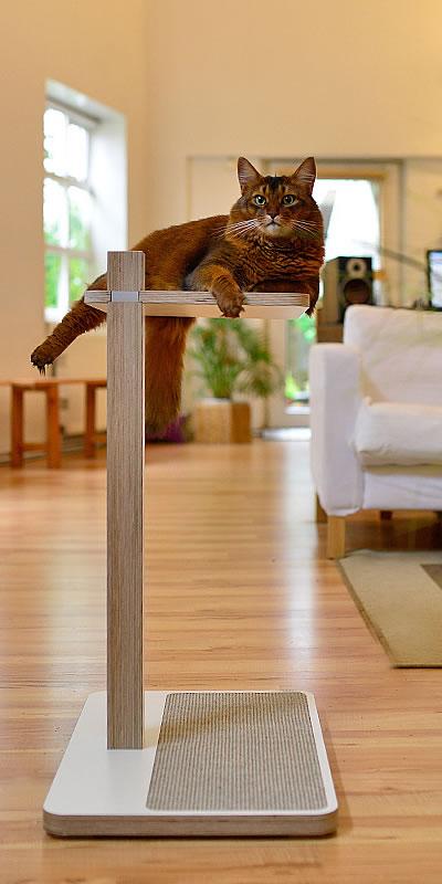 Design Kratzbaum Aus Holz Und Wellpappe: Kratzbaum Home 1-stämmig / Kratzbäume / Stylecats Design