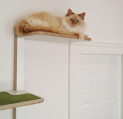 varianten kratzbaum kratzwand freischweber kratzb ume stylecats design kratzbaum. Black Bedroom Furniture Sets. Home Design Ideas