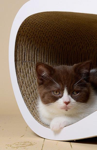 kratzm bel stylecats design kratzbaum. Black Bedroom Furniture Sets. Home Design Ideas