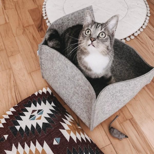 Katzenbett GROOVIE Geschlossen